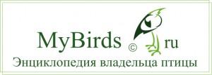 logo_Mybirds