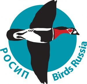 Logo ROSIP