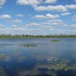 Батьковское озеро. Фото В.Конторщикова