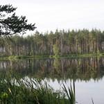 Б.Туголянское озеро. Фото В.Конторщикова