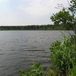 Сальковское оз. Фото О.Гринченко
