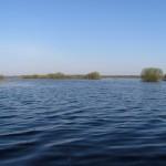 Озеро в большую воду весной. 10.05.2013
