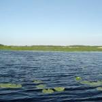 Озеро в полноводное лето. 11.06.2008