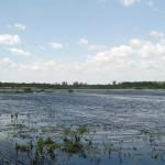 Северная часть озера в полноводное лето. 11.06.2008